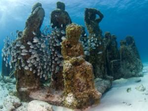 Shipwreck Trail – Florida, EE.UU. Barcos hundidos de diferentes épocas marítimas, cuentan la historia  de estas embarcaciones, convirtiéndose en un santuario marítimo.